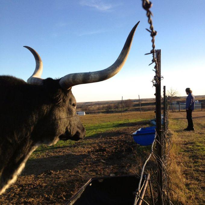 TexasRoadTrip_Dec201413