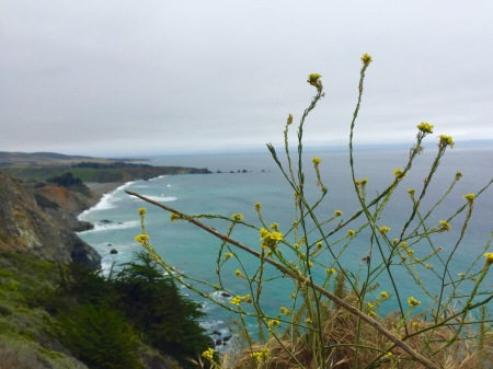 Coast view. Somewhere on the PCH. May 2016