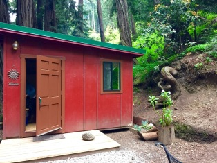 Our little cabin under the redwoods at Riverside Campgrounds. Big Sur, CA, May 2016