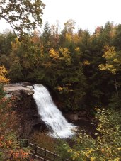 View of Muddy Creek Falls.