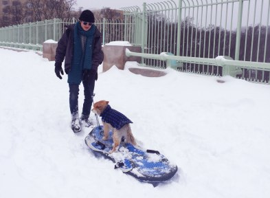 Jordan and Sammie on a sled on Duke Ellington Bridge.