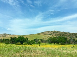 View from the road. | Wichita Mountains Wildlife Refuge, OK